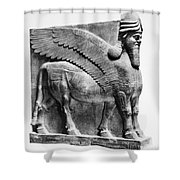 Assyria: Bull Scultpure Shower Curtain