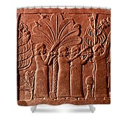 Assyrian Queen, 645 B.c Shower Curtain