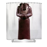 Assyrian Statue Shower Curtain
