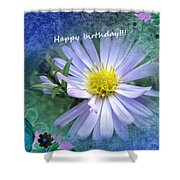 Aster ,  Greeting Card Shower Curtain