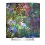 Aster 5077 Idp_2 Shower Curtain