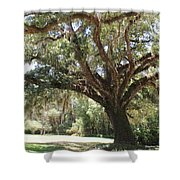 Astride Mighty Oak Shower Curtain