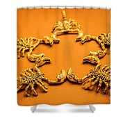 Astrological Stars Shower Curtain