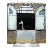 Asymmetrical Giraffe  Shower Curtain
