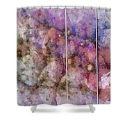 Asynchrony Imagination  Id 16099-024356-74201 Shower Curtain