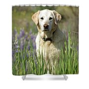 At Attention Shower Curtain