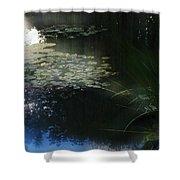 At Claude Monet's Water Garden 3 Shower Curtain