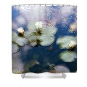 At Claude Monet's Water Garden 4 Shower Curtain