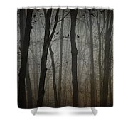 At Long Last Shower Curtain