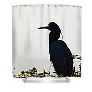 At Pond's Edge Shower Curtain