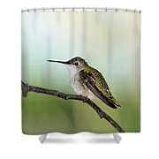 At Rest 2 Shower Curtain