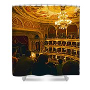 At The Budapest Opera House Shower Curtain