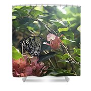 At The Butterfly Expo 2 Shower Curtain