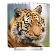 At The Center - Tiger Art Shower Curtain