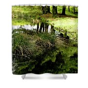 At The Edge Of The Forest Pond. Shower Curtain