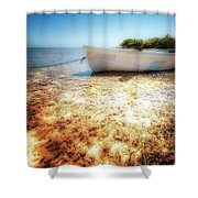 At The Edge Of The Ocean Shower Curtain