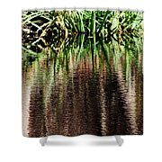 At The Edge Of The Pond Shower Curtain
