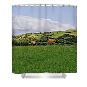 At The Hill Bottom. Shower Curtain