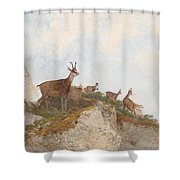 At The Vanguard Shower Curtain