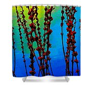At The Water's Edge Shower Curtain