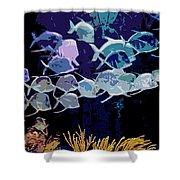 Atlantis Aquarium Shower Curtain