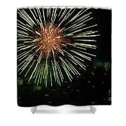 Atom Burst Shower Curtain