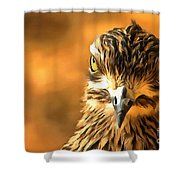 Attitude...with Feathers Shower Curtain