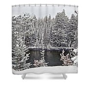 Au Sable River Overlook Shower Curtain