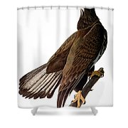 Audubon: Bald Eagle Shower Curtain