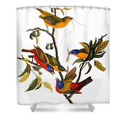 Bunting, 1827 Shower Curtain