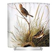 Audubon: Finch Shower Curtain