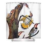 Audubon: Flicker Shower Curtain