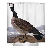 Audubon: Goose, 1827 Shower Curtain