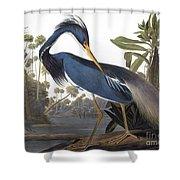 Audubon Heron, 1827 Shower Curtain