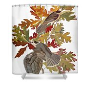 Audubon: Jay Shower Curtain