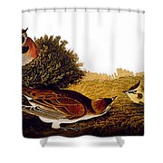 Audubon Lark Shower Curtain