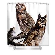 Audubon: Owl, (1827-1838) Shower Curtain