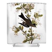 Audubon: Pewee, 1827-38 Shower Curtain