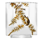 Audubon: Siskin Shower Curtain