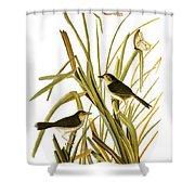 Audubon: Sparrow, (1827) Shower Curtain