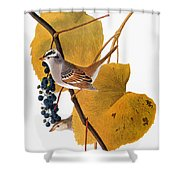 Audubon: Sparrow Shower Curtain