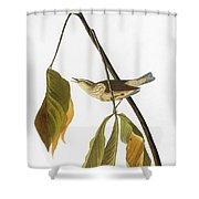 Audubon: Thrush, 1827 Shower Curtain