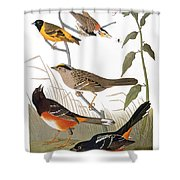 Audubon: Various Birds Shower Curtain