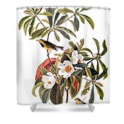 Audubon: Warbler, 1827-38 Shower Curtain