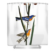 Audubon: Warbler, 1827 Shower Curtain