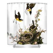 Audubon: Yellow Chat, (1827-38) Shower Curtain