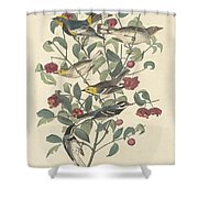 Audubon's Warbler Shower Curtain