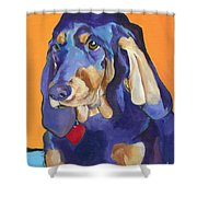 Augie Shower Curtain