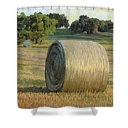 August Bales Shower Curtain