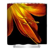 August Flame Glory Watercolor Shower Curtain